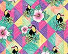 Toucan Paradise